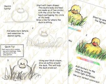 How to Draw & Color Ducklings - Classroom Activity Resource - Digital Lesson Tutorial - Printable PDF - Drawing - Instant Download