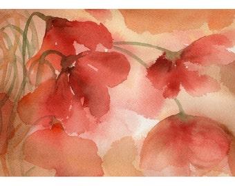 Flowers (1) (flowers series) - Fiori (1) (Serie fiori)