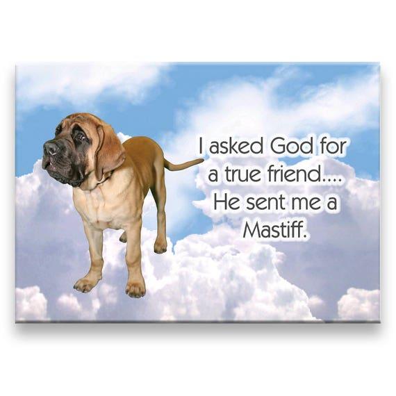Mastiff True Friend Fridge Magnet