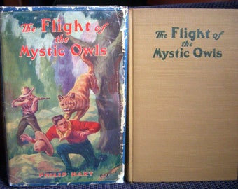 The Flight of the Mystic Owls, Philip Hart, HB/DJ, Extremely Scarce in Dust Jacket, 1929 Antique Adventure Mystery Book for Boys