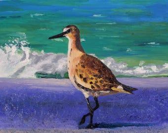Sandpiper on Purple Beach - Original Oil Painting