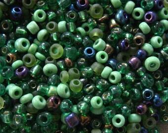 Green Jubilee 10/0 Seed Bead Mix 15 grams
