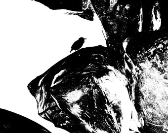 BIRD ETCHED GOTH Photo Art Print in 3 Colors