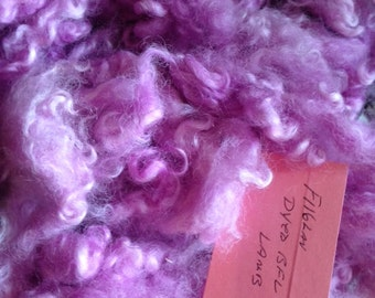 """F116lav Hand Dyed Super Curly Border Leicester Lamb 4"""" locks 2  Oz"""