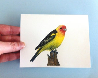 Watercolor Bird Card - Western Tanager