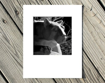 Penn State Lion Shrine Photo, Black and White, Nittany Lion, PSU, Matted Art, 5x5 inch photo matted to 8x10 inches