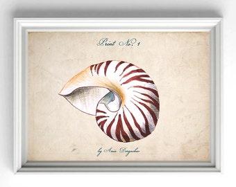 Seashell print, Sea print, Sea decor, Wall art, Sea wall art, Ocean print, Ocean art, Nautical poster, Nautical decor, Sea life decor, Sea