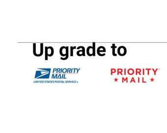 up grade to priority mail / excludes paper flowers