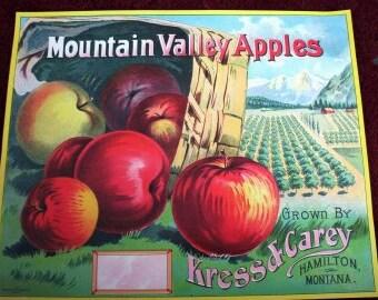 1910s Hamilton Montana Apple Apples Basket Orchards Antique Litho