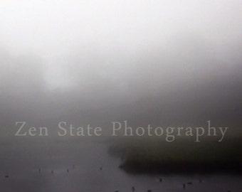 Fog Photography Print. Nature Print. Forest Photo Print. Landscape Print. Wetlands Photo. Framed Photography or Canvas Print. Home Decor.