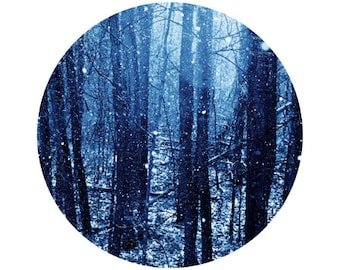 Winter Decor, Blue Forest Photography, Nature, Surreal, Cold Photo, Snow, Holiday, Circle, Round Image 5x5 inch Print, Wonderland
