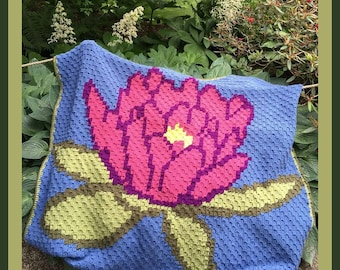 C2C Graph, Lotus Afghan, C2C Graph, with Written Word Chart