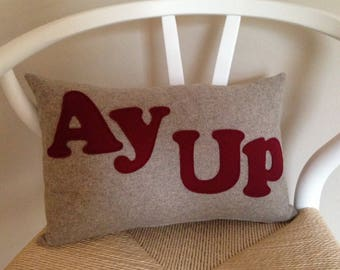 Ay Up Cushion