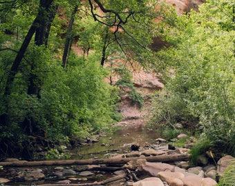 arizona photography, sedona photography, oak creek canyon, red rocks, sedona art, southwestern photography, southwestern decor large  art