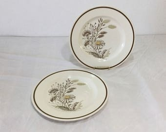Royal China Americana Autumn Mist Set of 2 Dinner Plates 1950's Rustic