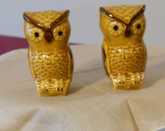 Brown and Black Owl Salt and Pepper Shakers