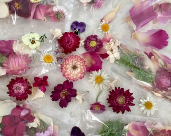 Flower Petals, Craft Supply, Dried Flowers, Wedding Confetti, Aisle Decorations, Table Decor, Centerpiece, Dry Rose Petals, 15 Boxes or Bags