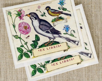 botanical bird bookplates - bird book plates - Ex Libris - bookplate stickers - gifts for her - custom bookplate sticker- gift for bookworm
