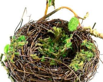 Decorative Bird Nests    Craft Bird Nest   Birds Nests   Craft Supplies   Natural Crafts