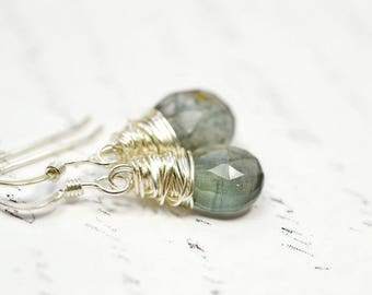 Moss Aquamarine Earrings, March Birthstone Jewelry, Sage Green Genuine Gemstone Briolette, Woodsy Forest Green Dangles