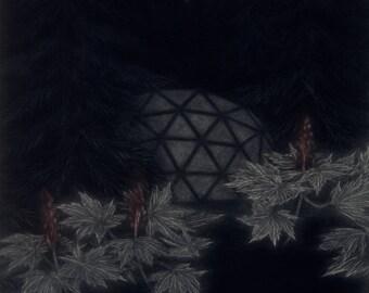 Subarctic Garden - Original Mezzotint
