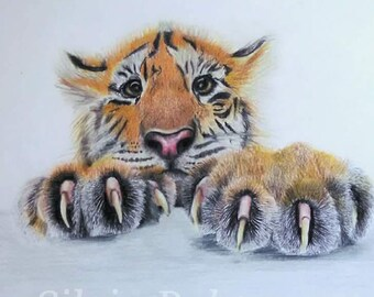 Original drawing, art, Tiger cub, not a print