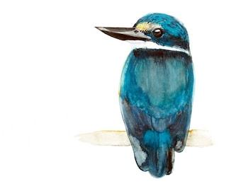 Sacred Kingfisher Watercolour Print, Turquoise Blue Australian Native Bird Wall Art