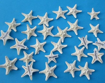 FREE SHIPPING!  10 Knobby starfish, off white, 1 inch,for crafts, weddings, home decor