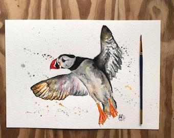 Puffin art, puffin print, natural history print, animal print, bird print, bird art, puffin