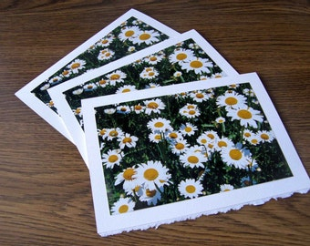 Daisy Day Brightener Cards - Set of Three Blank Spring Greeting Cards
