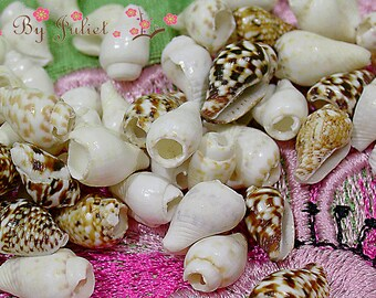 Trim Seashells Bead Natural Sea Shell Real Conch 100 Drill Piece Vintage Mix Lot Tiny Small Mini Assorted Color Mixed Jewelry Handmade Craft