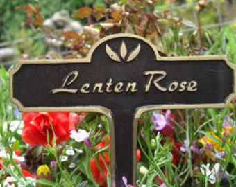 Lenten Rose Brass Garden Plant Sign