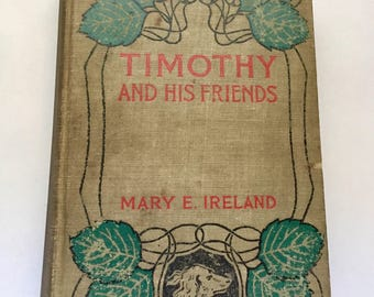 Antique/Vintage Book-Timothy and His Friends 1902