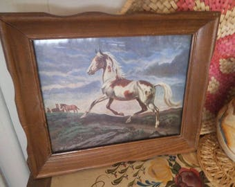 Vintage Framed Horse Picture ~ Pinto ~ Brown and white coat ~ Signed and dated 79