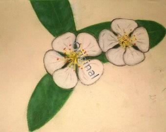 White Blossom Print