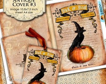 ANTIQUE COVER n3 - Digital collage sheet book crow raven halloween scrapbook diary invitation - instant download printable - pp107