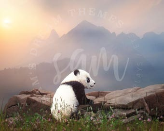 2 pack Panda backdrop, Panda Digital Backdrop, Panda Stock, Panda Cutout, Panda Overlay, Panda Background, spring backdrop, summer backdrop