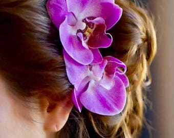 Orchid Hair Clip, Phalaenopsis, Wedding, Bridal Hair Accessories,  Floral Hair Clip or Comb, Hair Veil, Hair Pin, Beach Weddings,Summer Hair