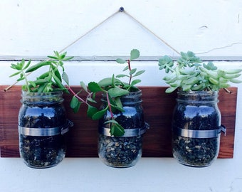 Mason jar planter- succulents and flowers!