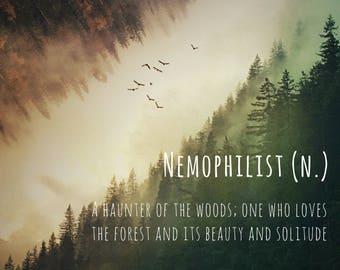 Nemophilist Photo Greeting Card, 4x5 inspirational cards, blank inside travel inspiration life event, encouragement good luck forest nature