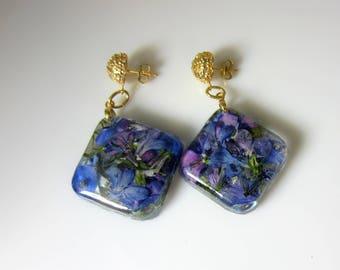 Blues and Purple Lobelia, Real Flower Earrings,   Pressed Flower Jewelry, Resin (3029)