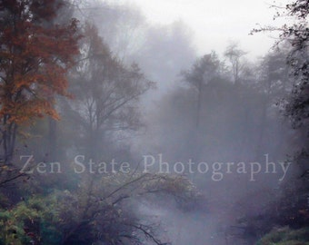 Fantasy Forest Wall Art. Nature Photography Print. Fog Photography. Forest Photo. Unframed Print, Framed Photography, or Canvas Art Print.