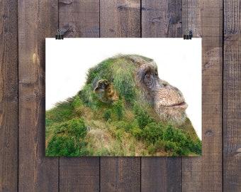 Chimpanzee Double Exposure - Fine Art Photo Print - Multiple Sizes