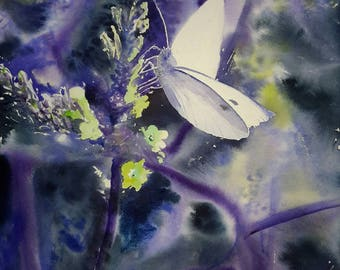Cabbage butterfly: watercolor 56 x 36 cm
