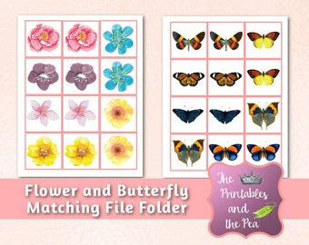 Flower & Butterfly Matching File Folder