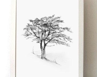 TRee art - Tree drawing - Giclee print -  Home Decor Wall Decor -Tree sketch - Nature illustration -  Art - Zen drawing Michelle Dujardin