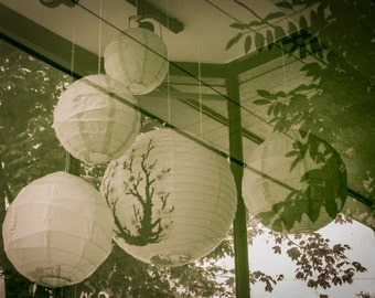 Fine Art Photography, RVA Photography, Richmond VA, Street Photography, Botanical print, Black and White, Paper Balloons.