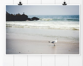 Beach House Art, Beach Decor, beach home decor, beach print, Seagull Wall Art, Beach House Decor, Ocean Photography, seagull art print