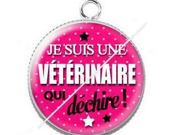 Cabochon resin cameo for veterinarian 1