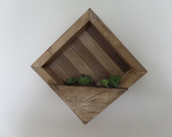 Reclaimed Wood Shadow Box Wall Planter with Succulents (Hen and Chicks)